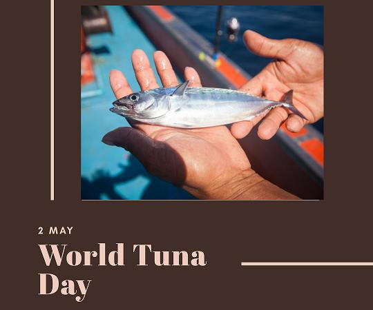 2 May – World Tuna Day